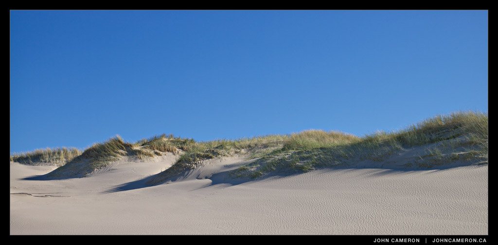 Dunes at Nehalem Bay State Park