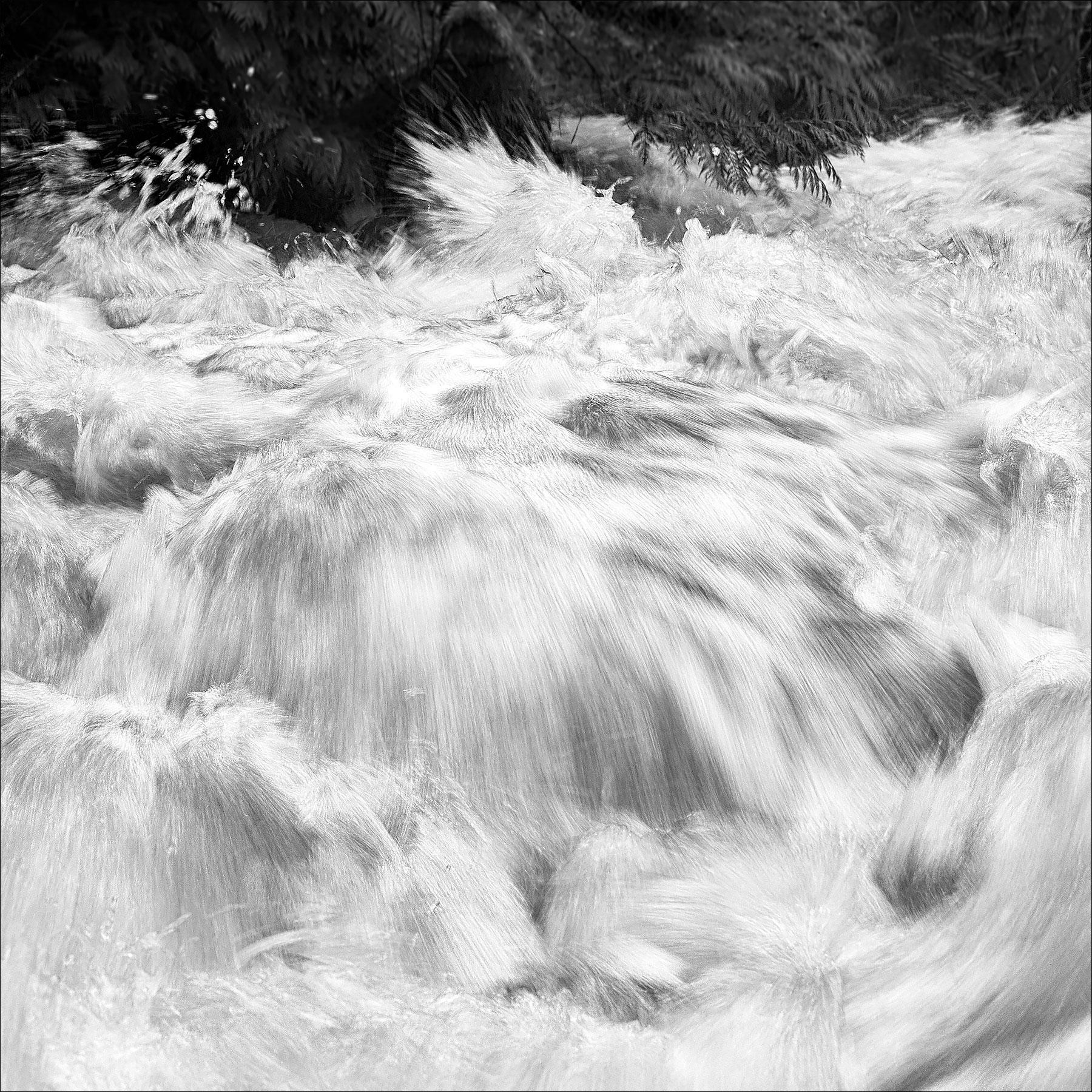 Waterpaint ©johncameorn.ca
