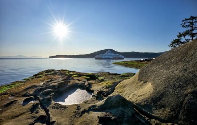 Salish Eagle at Galiano Island ©johncameron.ca