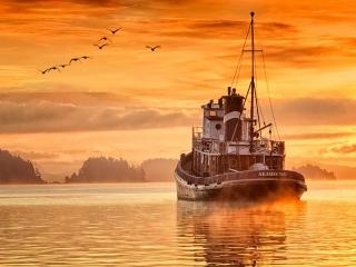 Seahorse ©johncameron.ca
