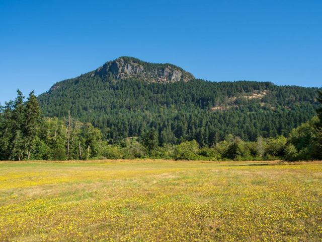 Mount Maxwell ©johncameron.ca