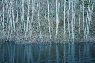 Ice Reflection © johncameron.ca