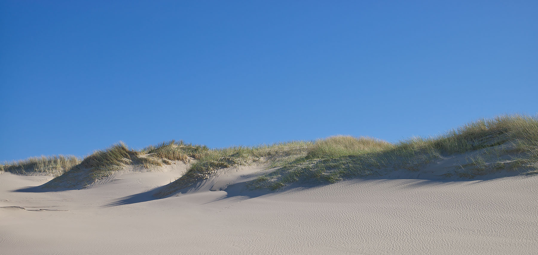 Dunes on Blue ©johncameron.ca