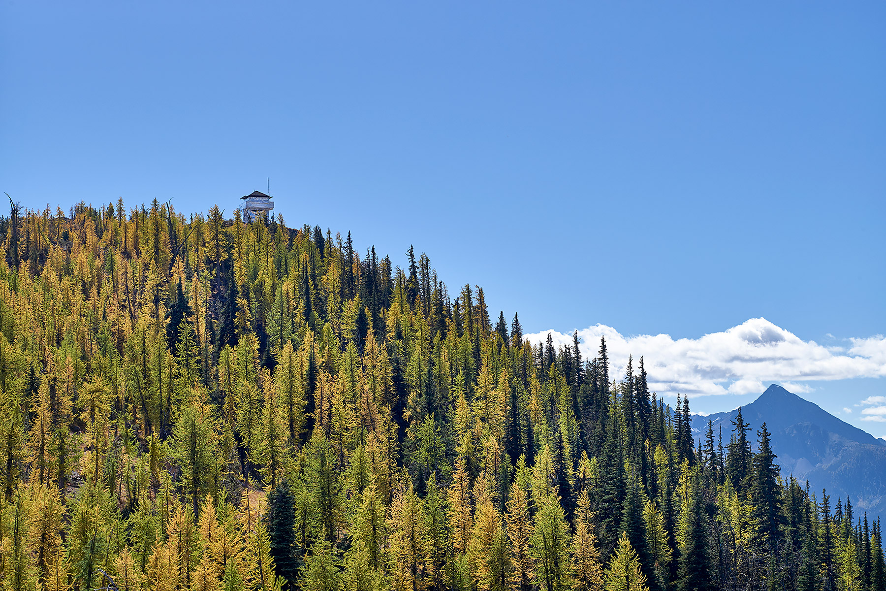 Goat Peak Fire Lookout from trail ©johncameron.ca