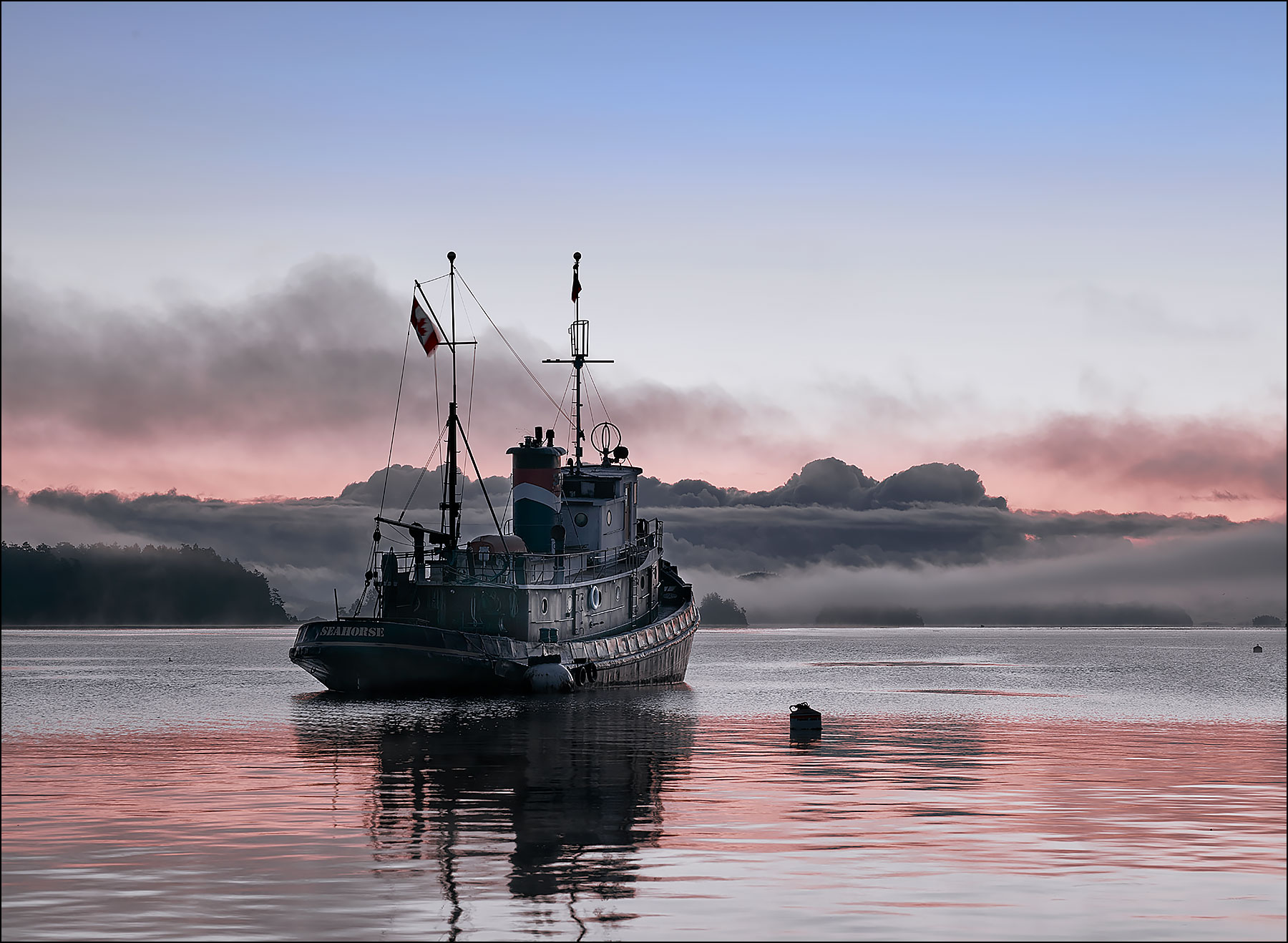 Seahorse at Dawn in Ganges Harbour