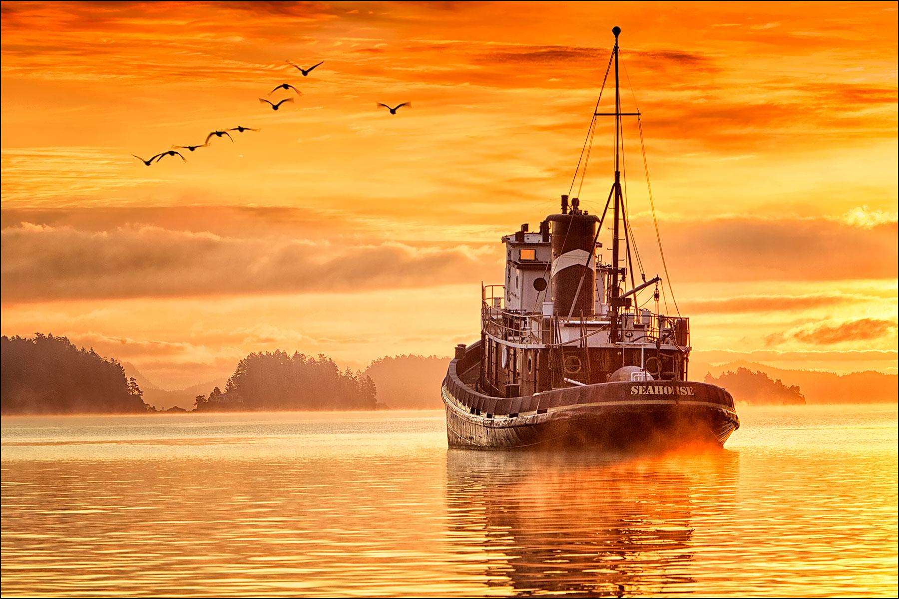 SeahorseTug in Ganges Harbour ©johncameron.ca